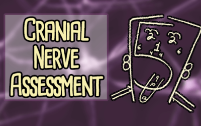 The Cranial Nerve Assessment for Nurses