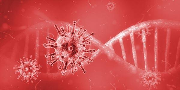 mRNA Vaccines - DNA